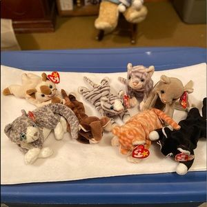 Ty| Set of 8 Beanie Babies Cats